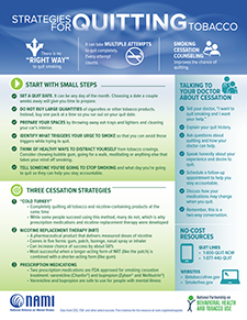 Strategies for Quitting Smoking Infographic